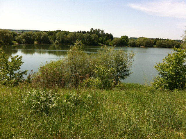 Baggersee bei Hirschaid
