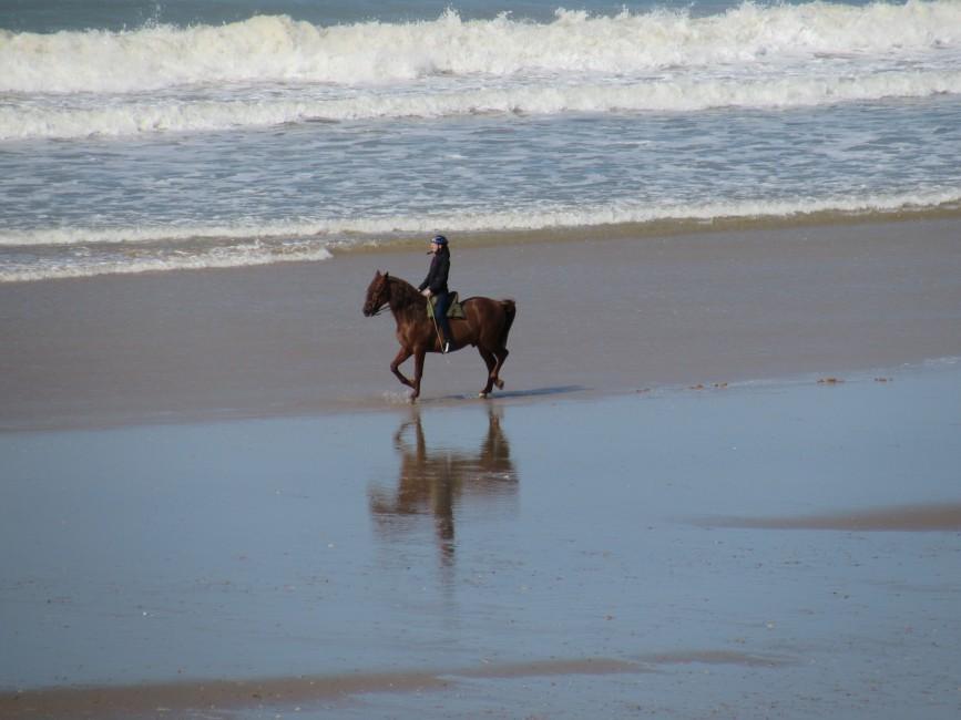 Reiten am Meer