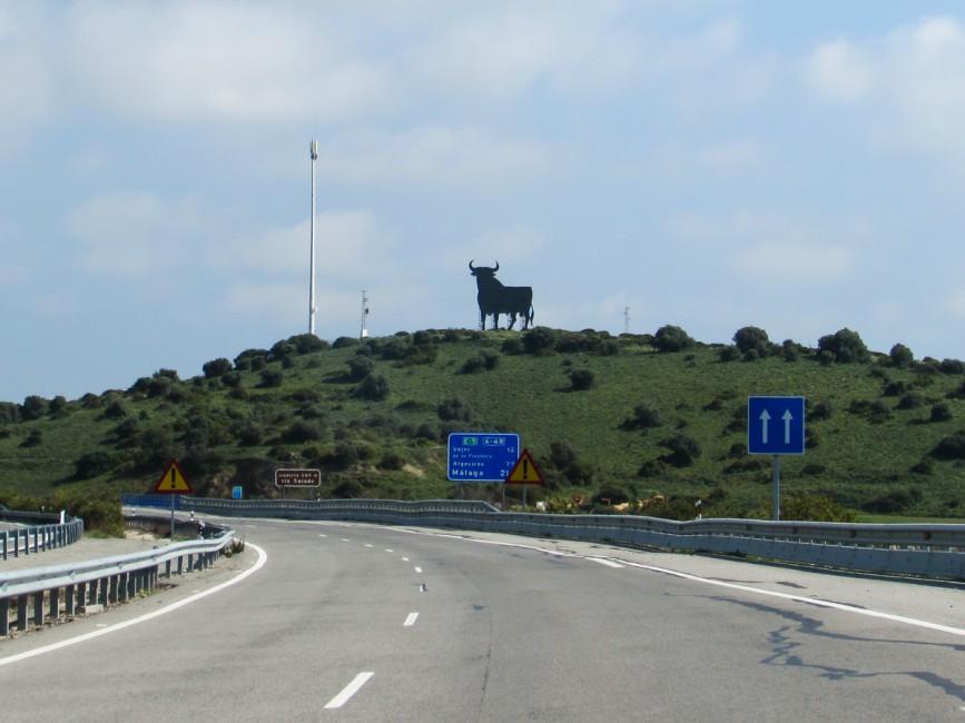 Stier an Strasse Spanien