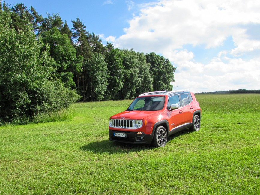Jeep Renegade in Wiese