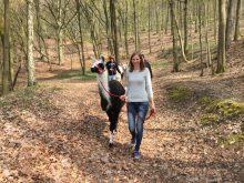 Zurück in die Natur: Lamatrekking in den Haßbergen