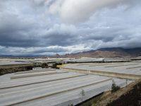 Almería – Im Land der tausend Gemüseplantagen