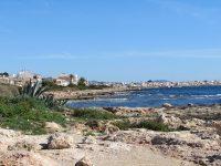 Wohin auf Mallorca? Die Regionen im Überblick