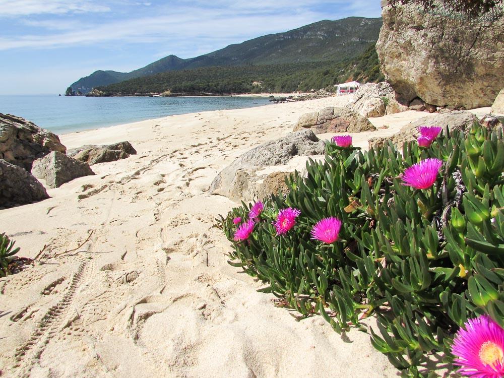 Galapinhos beach