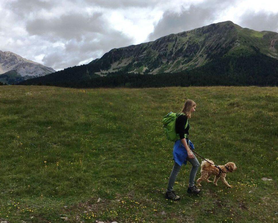 Wanderung Lavazejoch